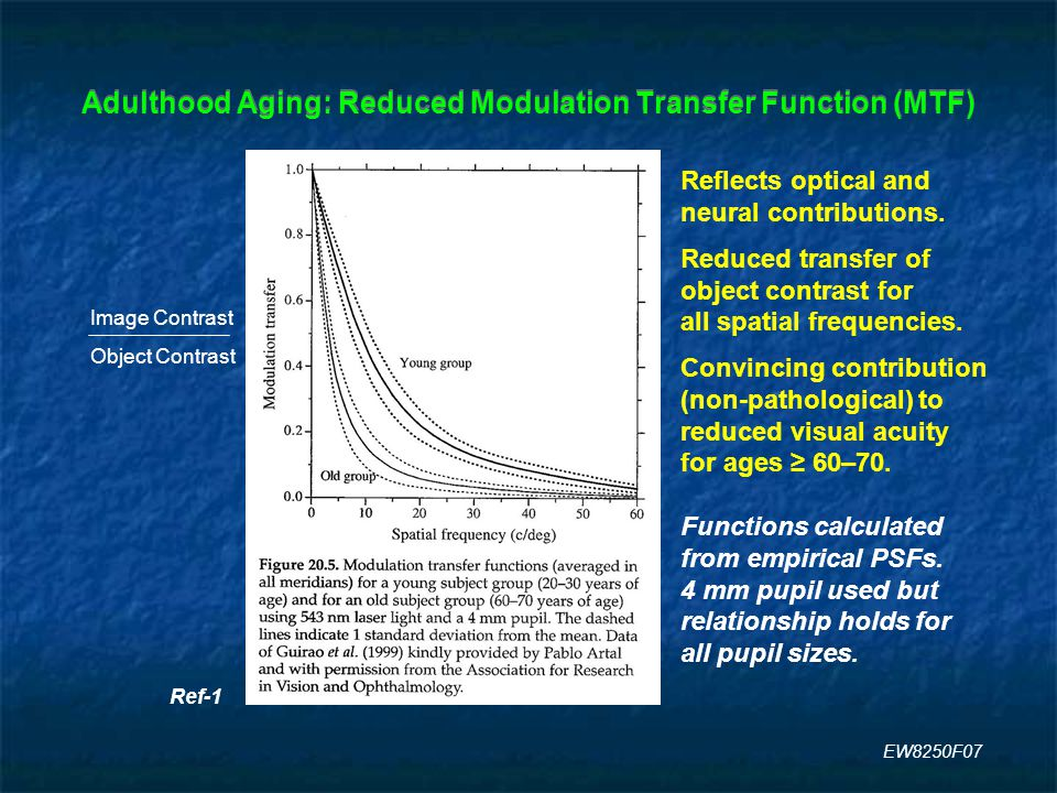 Adulthood Aging: Reduced Modulation Transfer Function (MTF) Ref-1 Image Contrast Object Contrast Reflects optical and neural contributions.