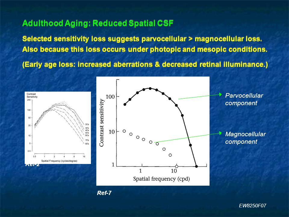 Adulthood Aging: Reduced Spatial CSF Selected sensitivity loss suggests parvocellular > magnocellular loss.