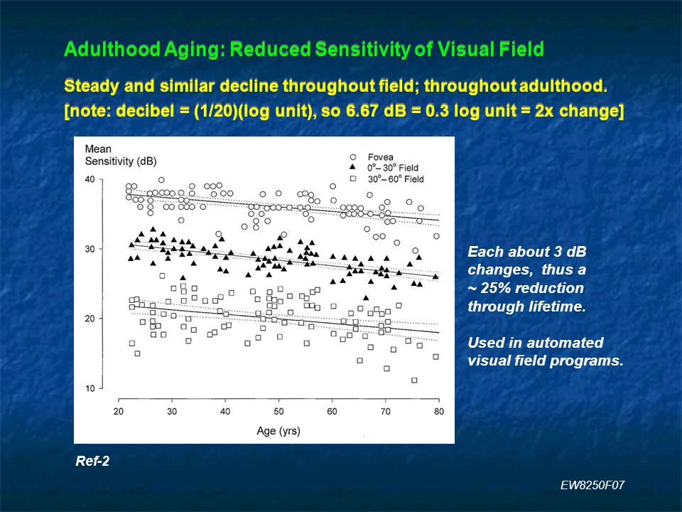 Adulthood Aging: Reduced Sensitivity of Visual Field Steady and similar decline throughout field; throughout adulthood.