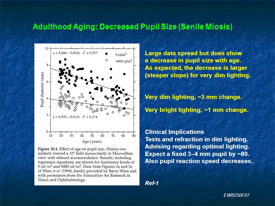 Adulthood Aging: Decreased Pupil Size (Senile Miosis) Large data spread but does show a decrease in pupil size with age.