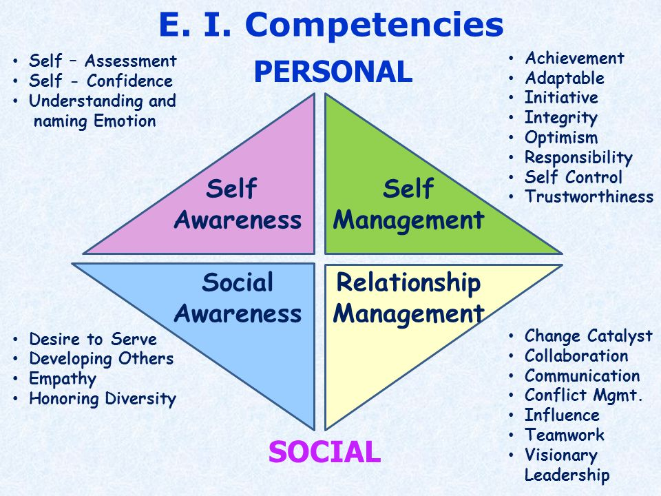 Self Awareness Self Management Social Awareness Relationship Management Self – Assessment Self - Confidence Understanding and naming Emotion Desire to Serve Developing Others Empathy Honoring Diversity Achievement Adaptable Initiative Integrity Optimism Responsibility Self Control Trustworthiness Change Catalyst Collaboration Communication Conflict Mgmt.