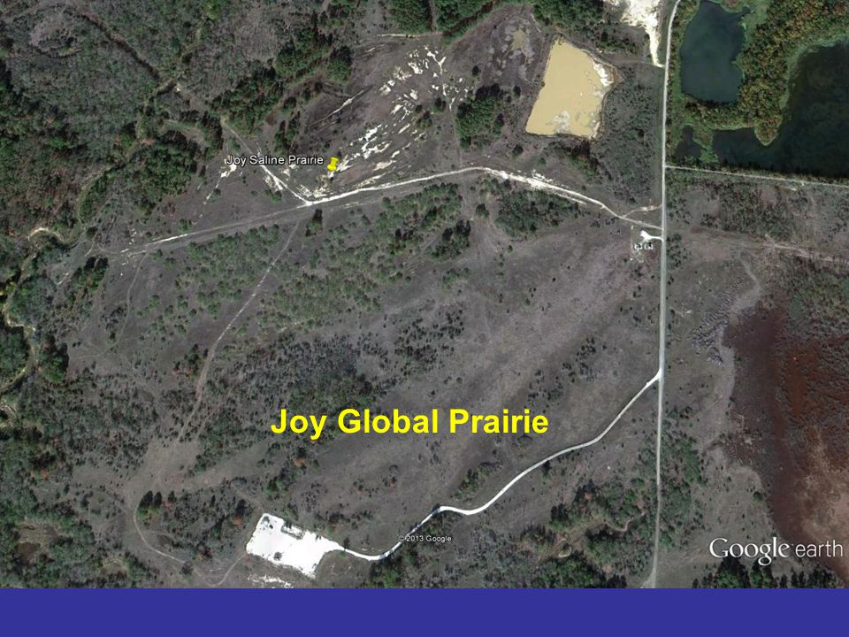 Joy Global Prairie