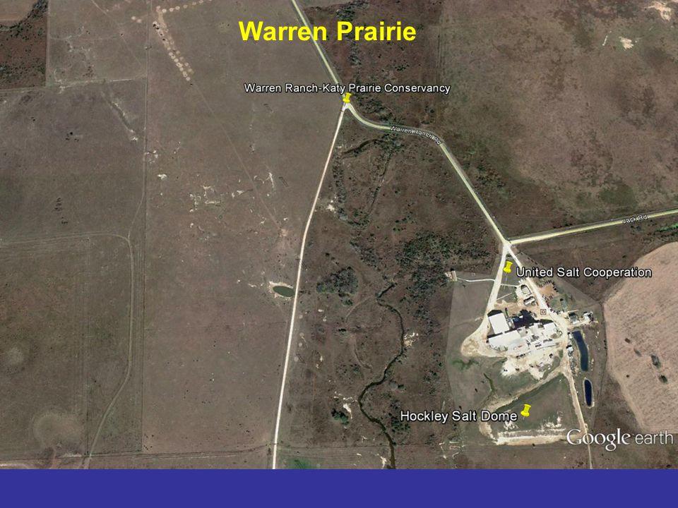 Warren Prairie