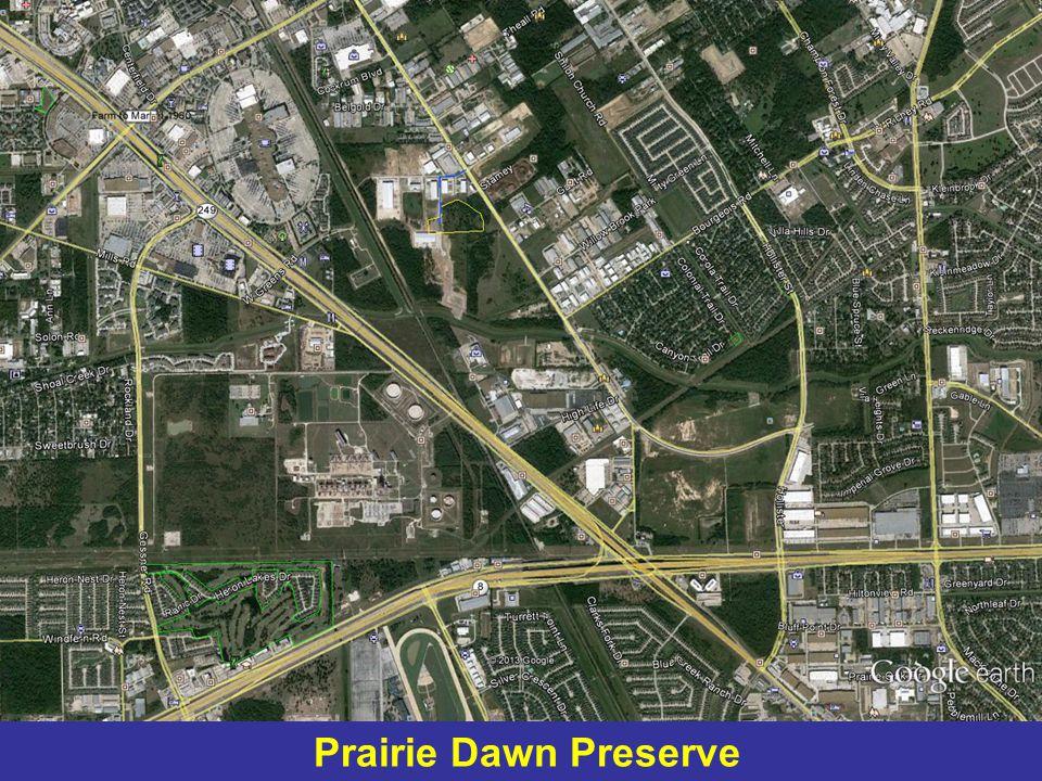 Prairie Dawn Preserve