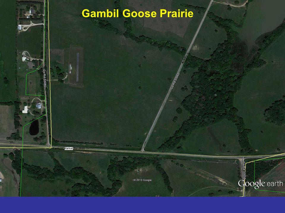 Gambil Goose Prairie