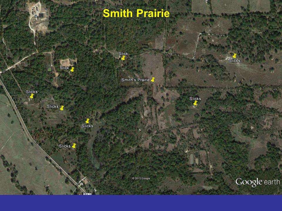 Smith Prairie