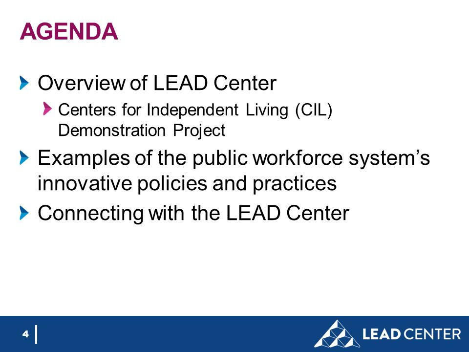 AGENDA Overview of LEAD Center Centers for Independent Living (CIL) Demonstration Project Examples of the public workforce system's innovative policie