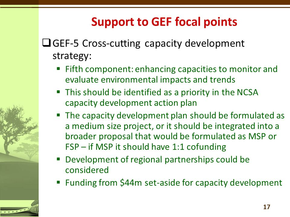  GEF-5 Cross-cutting capacity development strategy:  Fifth component: enhancing capacities to monitor and evaluate environmental impacts and trends  This should be identified as a priority in the NCSA capacity development action plan  The capacity development plan should be formulated as a medium size project, or it should be integrated into a broader proposal that would be formulated as MSP or FSP – if MSP it should have 1:1 cofunding  Development of regional partnerships could be considered  Funding from $44m set-aside for capacity development 17