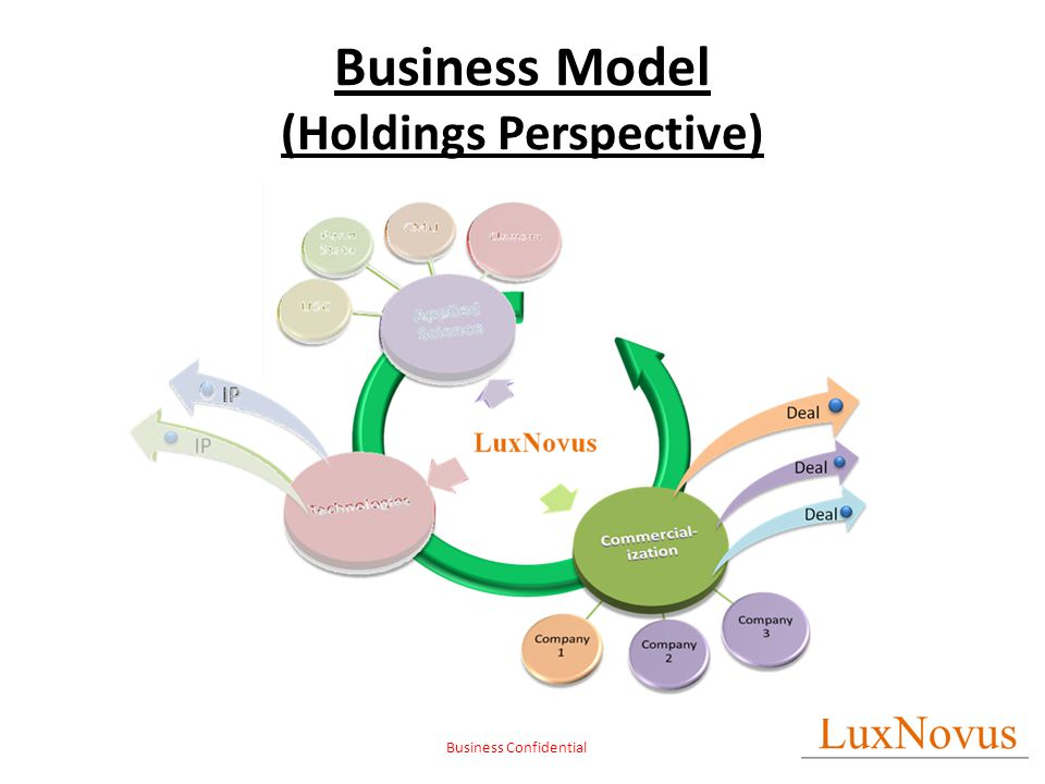 Business Confidential Business Model (Holdings Perspective)