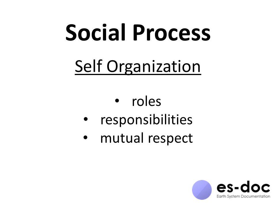 Social Process Self Organization roles responsibilities mutual respect
