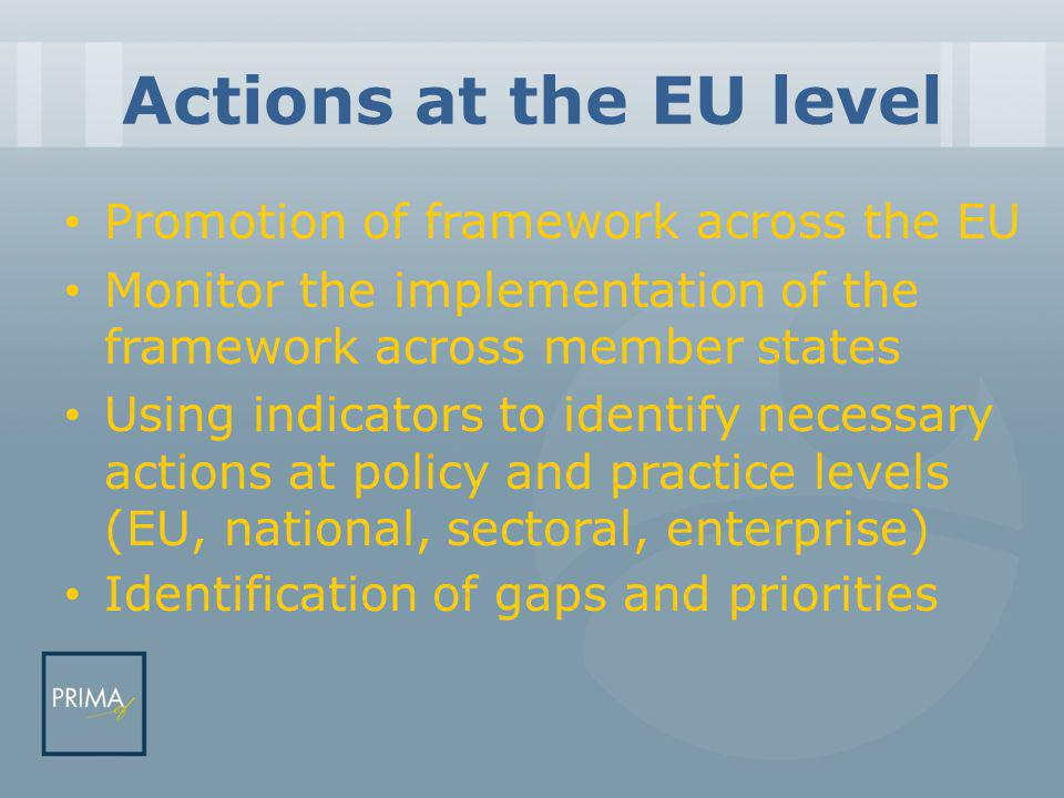 Actions at the EU level Promotion of framework across the EU Monitor the implementation of the framework across member states Using indicators to identify necessary actions at policy and practice levels (EU, national, sectoral, enterprise) Identification of gaps and priorities