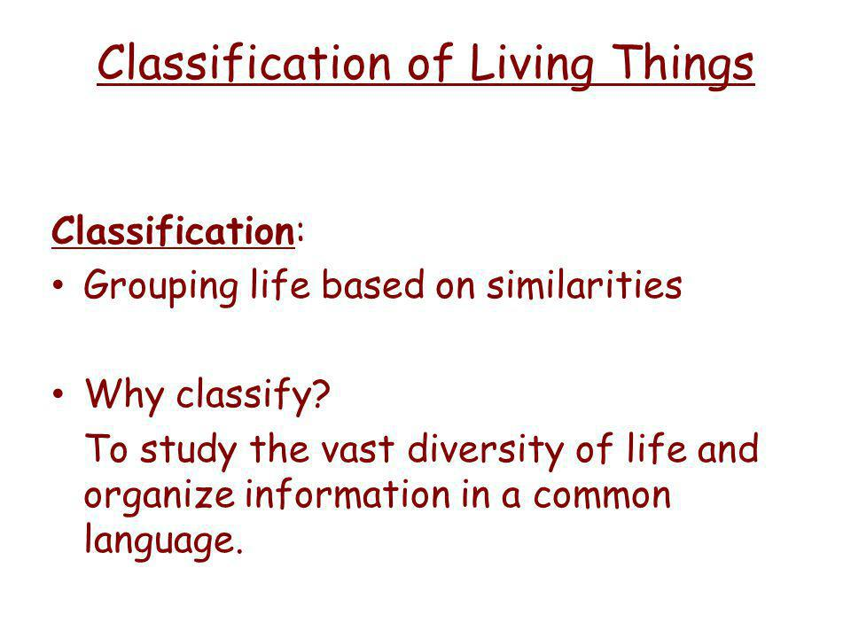 Classification of Living Things Classification: Grouping life based on similarities Why classify.