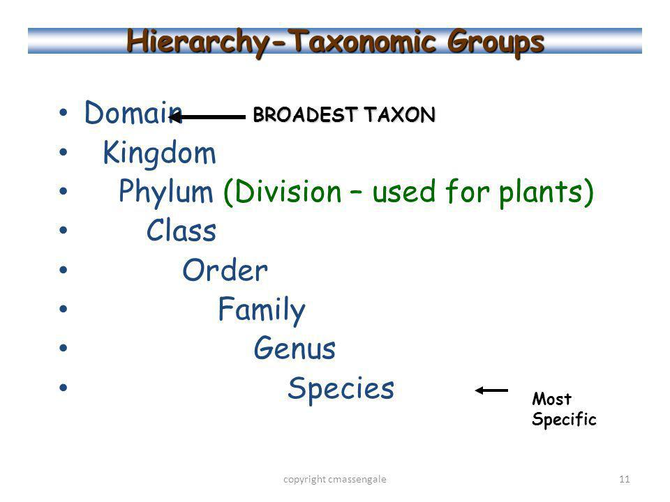 Hierarchy-Taxonomic Groups Domain Kingdom Phylum (Division – used for plants) Class Order Family Genus Species copyright cmassengale11 BROADEST TAXON Most Specific