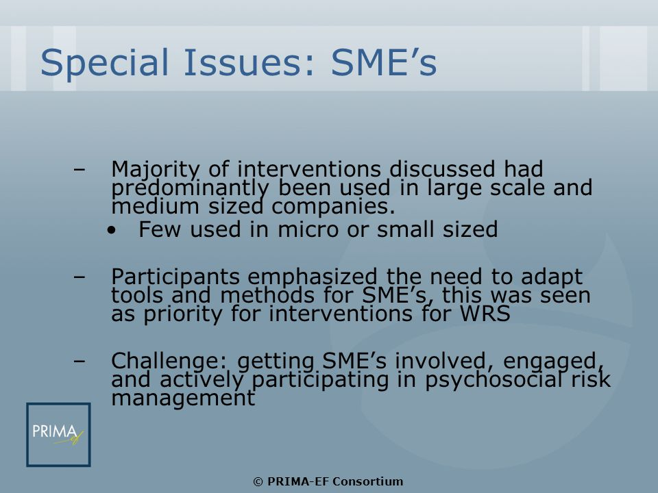 Special Issues: SME's –Majority of interventions discussed had predominantly been used in large scale and medium sized companies.