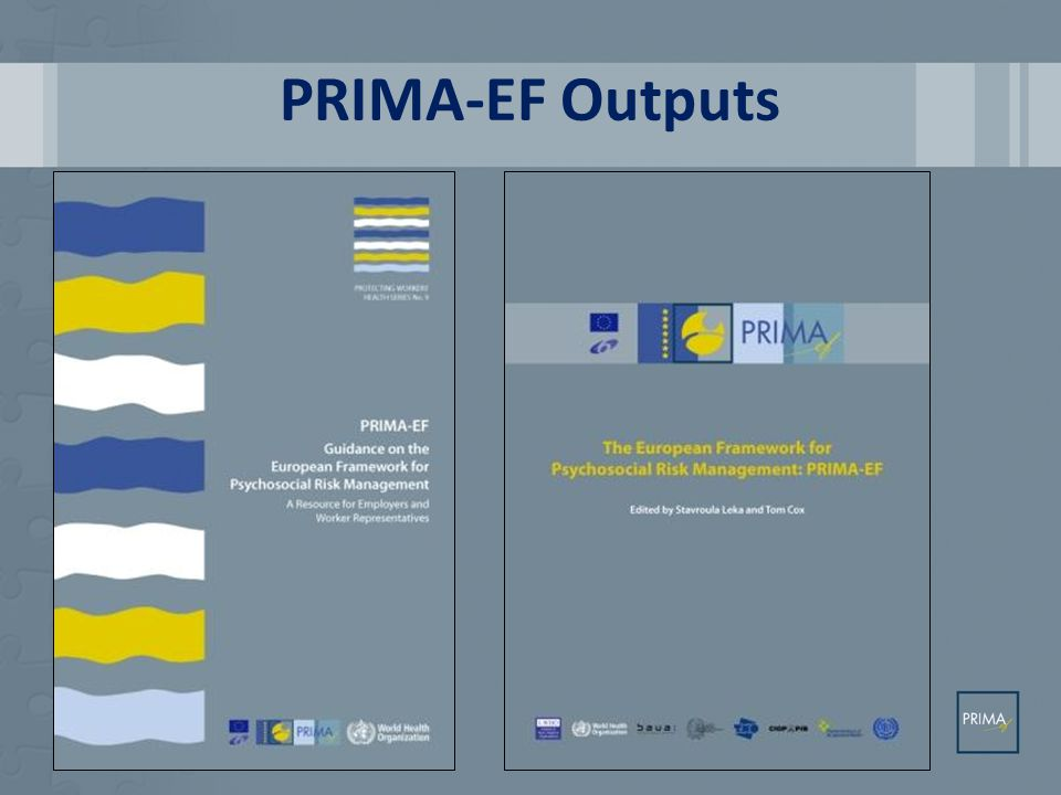 Added Value Clarity of best practice principles, standards and actions Indicator models for monitoring Integrative framework that can be used at the enterprise and the policy levels to assess situation for the EU overall and across member states Would be possible to use as part awareness campaign linking policy to practice Identification of gaps and priorities © PRIMA-ef Consortium