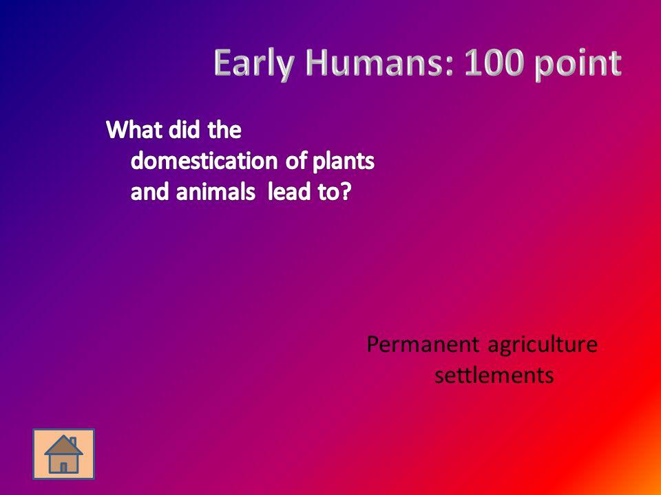 Permanent agriculture settlements