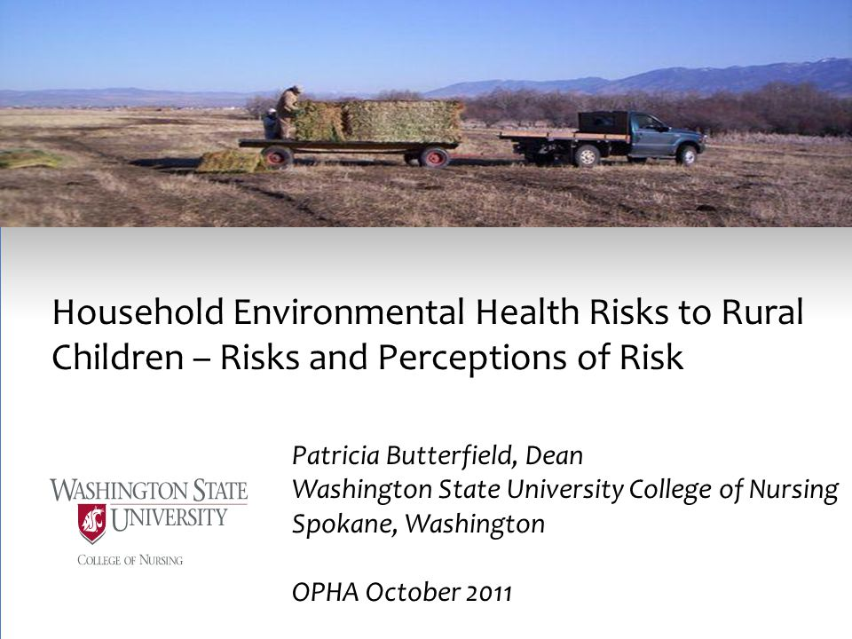 Household Environmental Health Risks to Rural Children – Risks and Perceptions of Risk Patricia Butterfield, Dean Washington State University College