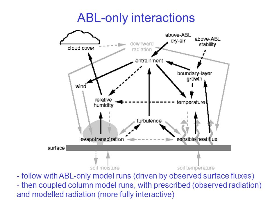 ABL-only interactions - follow with ABL-only model runs (driven by observed surface fluxes) - then coupled column model runs, with prescribed (observed radiation) and modelled radiation (more fully interactive)