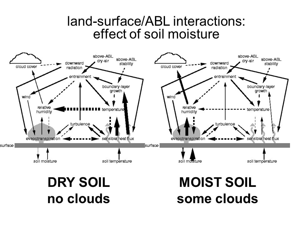 land-surface/ABL interactions: effect of soil moisture DRY SOIL no clouds MOIST SOIL some clouds