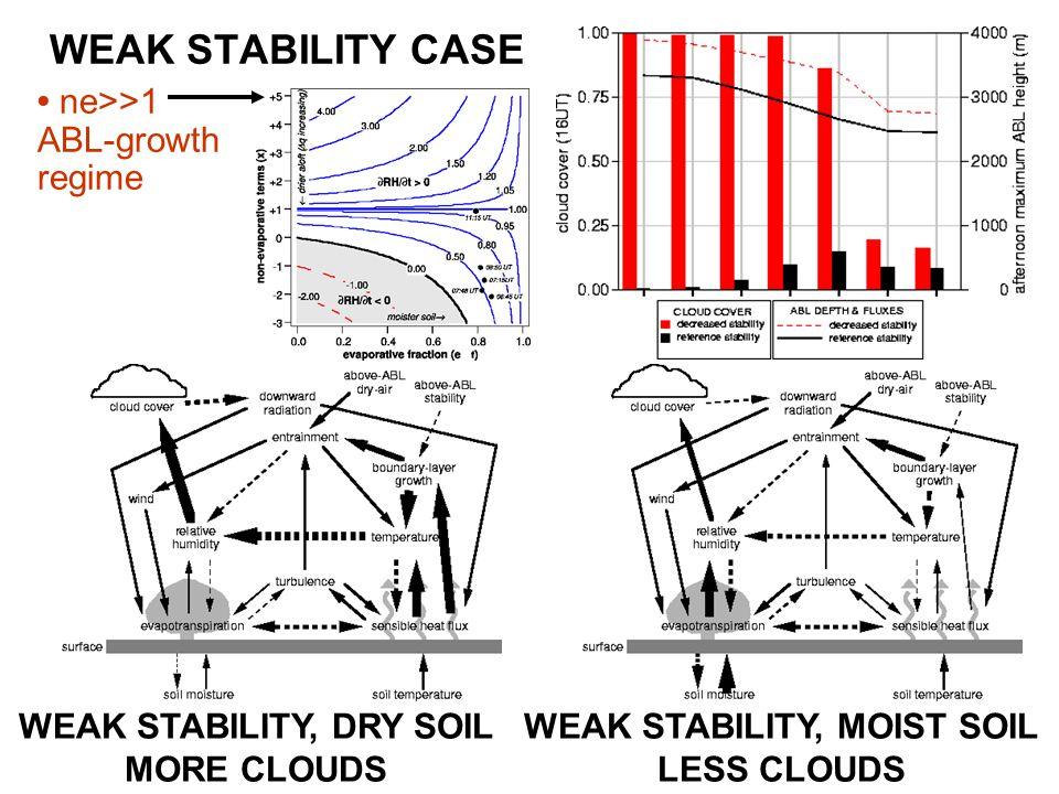 WEAK STABILITY CASE WEAK STABILITY, DRY SOIL MORE CLOUDS WEAK STABILITY, MOIST SOIL LESS CLOUDS ne>>1 ABL-growth regime