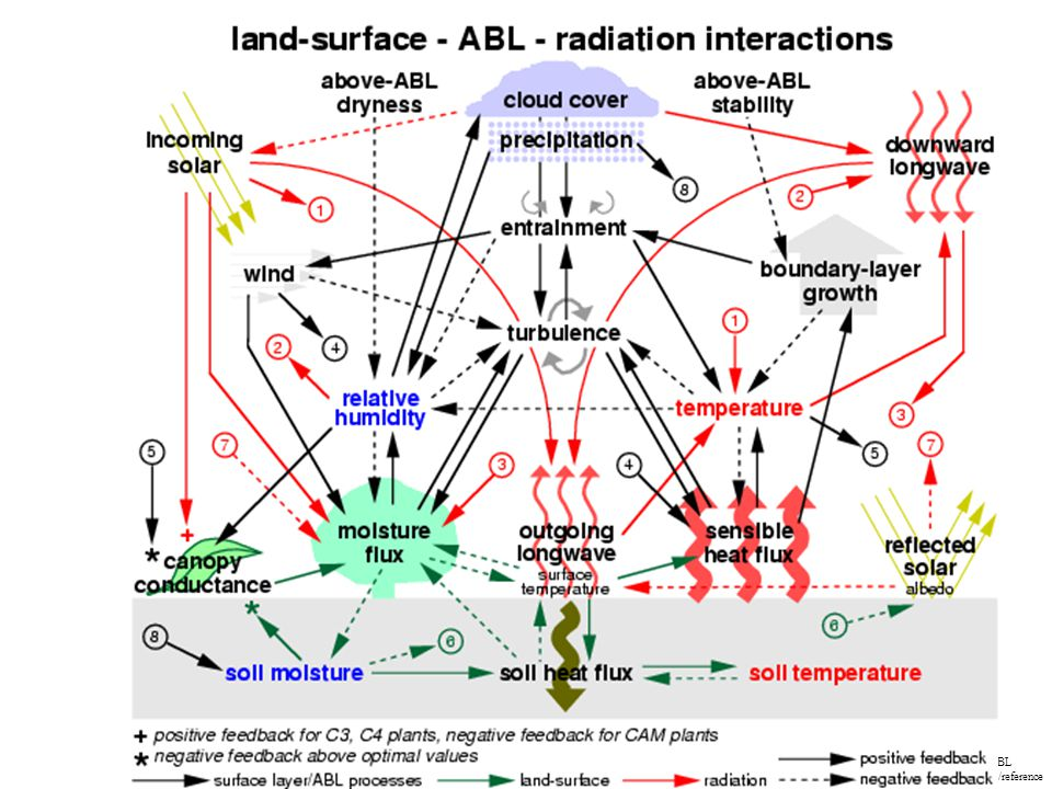 LS-ABL interactions/reference s