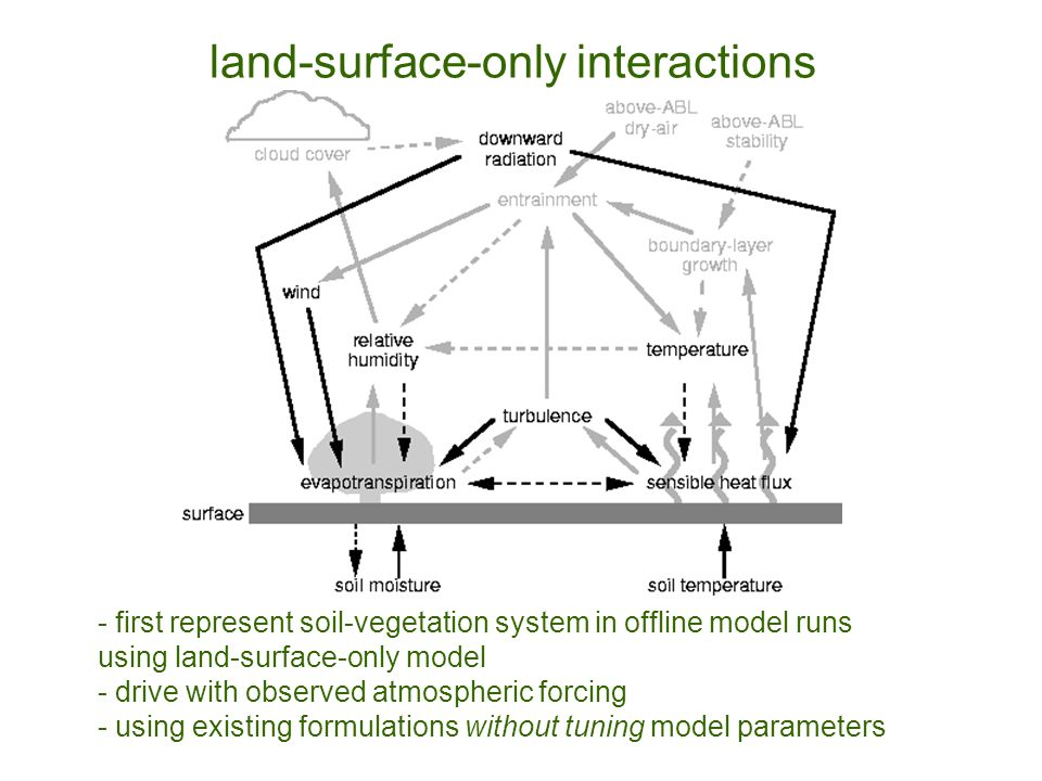 - first represent soil-vegetation system in offline model runs using land-surface-only model - drive with observed atmospheric forcing - using existing formulations without tuning model parameters land-surface-only interactions