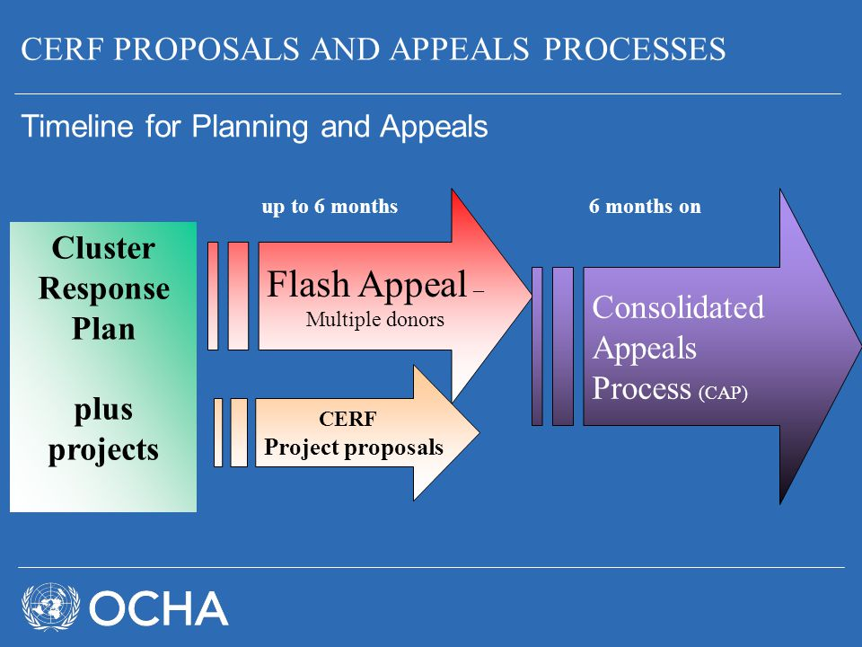 CERF PROPOSALS AND APPEALS PROCESSES Timeline for Planning and Appeals Cluster Response Plan plus projects Flash Appeal – Multiple donors CERF Project