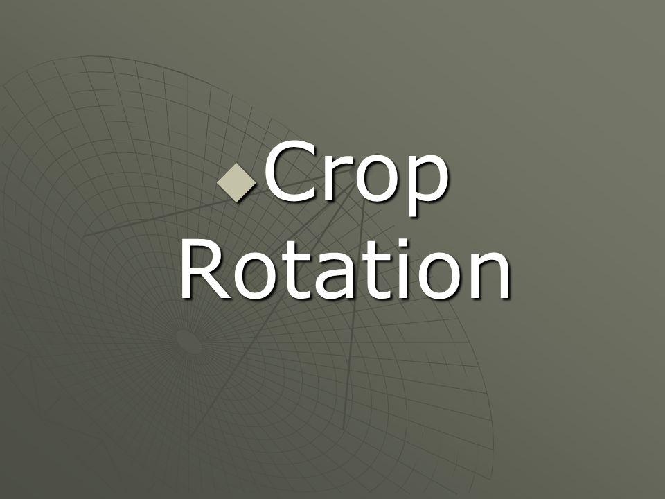 Alternating the plants.  Fertile soil  Increase amount of food.