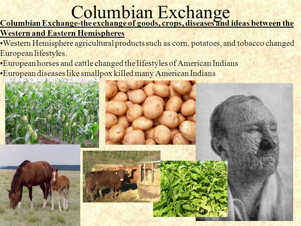Columbian Exchange Columbian Exchange-the exchange of goods, crops, diseases and ideas between the Western and Eastern Hemispheres Western Hemisphere agricultural products such as corn, potatoes, and tobacco changed European lifestyles.