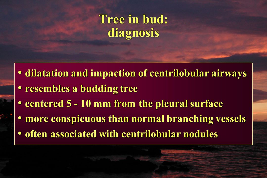 Tree in bud: diagnosis dilatation and impaction of centrilobular airways dilatation and impaction of centrilobular airways resembles a budding tree re