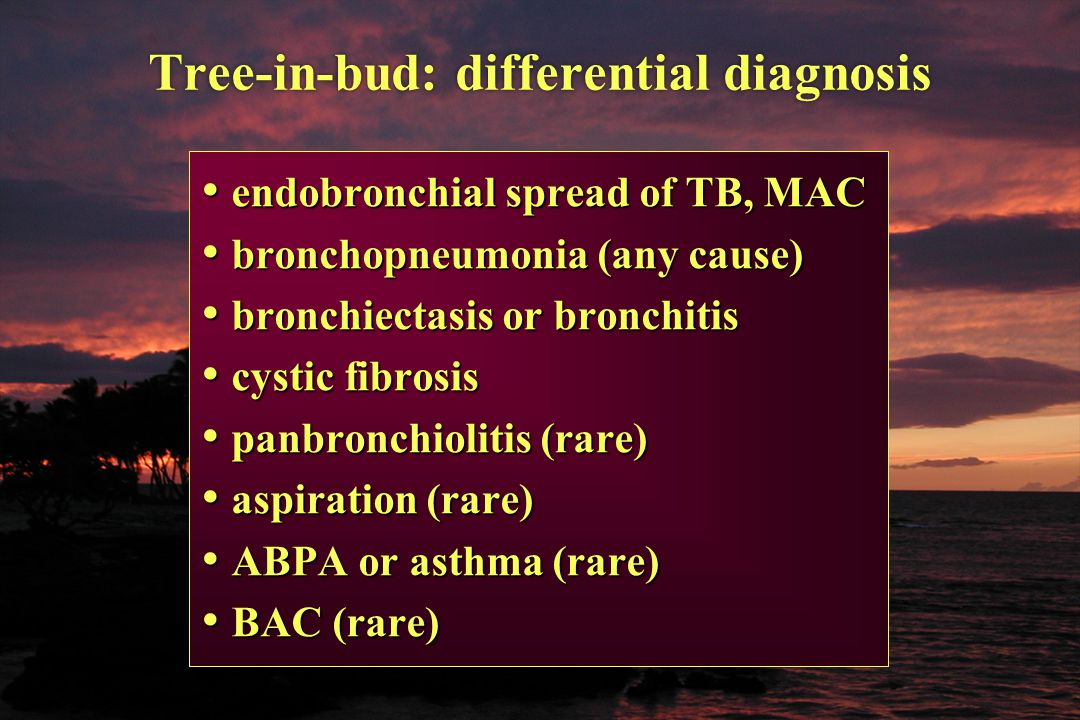 Tree-in-bud: differential diagnosis endobronchial spread of TB, MAC endobronchial spread of TB, MAC bronchopneumonia (any cause) bronchopneumonia (any