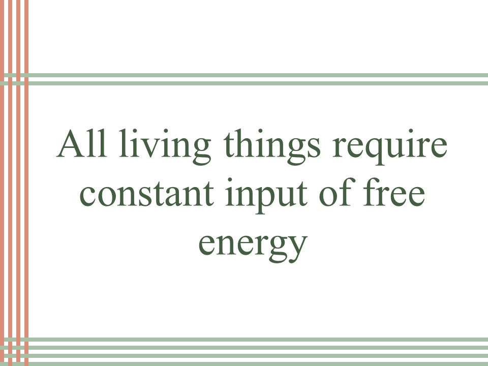 EK: Life requires a highly ordered system Loss of order or free energy results in death
