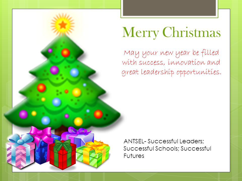 ANTSEL- Successful Leaders; Successful Schools; Successful Futures Merry Christmas May your new year be filled with success, innovation and great leadership opportunities.