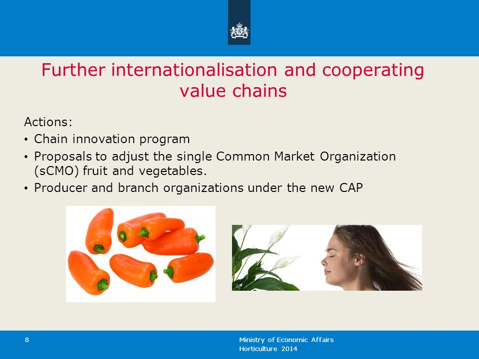 Horticulture 2014 Ministry of Economic Affairs 8 Further internationalisation and cooperating value chains Actions: Chain innovation program Proposals