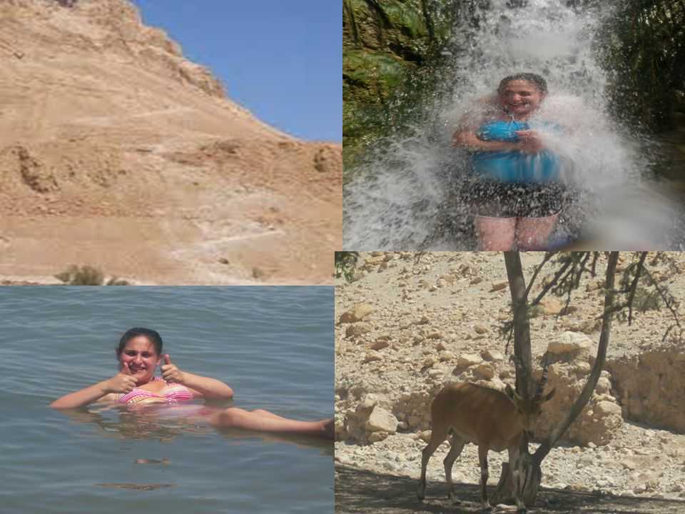 The Negev **Masada** Hike in Ein Gedi and even swim in a waterfall DEAD SEA!.