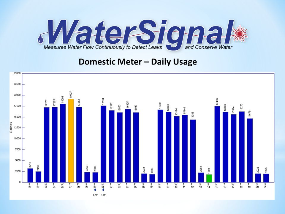 Domestic Meter – Daily Usage
