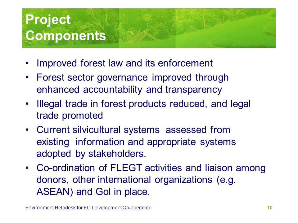 Environment Helpdesk for EC Development Co-operation 10 Project Components Improved forest law and its enforcement Forest sector governance improved t