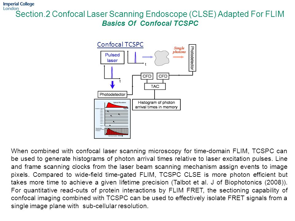 Section.2 Confocal Laser Scanning Endoscope (CLSE) Adapted For FLIM Basics Of Confocal TCSPC Confocal TCSPC When combined with confocal laser scanning microscopy for time-domain FLIM, TCSPC can be used to generate histograms of photon arrival times relative to laser excitation pulses.