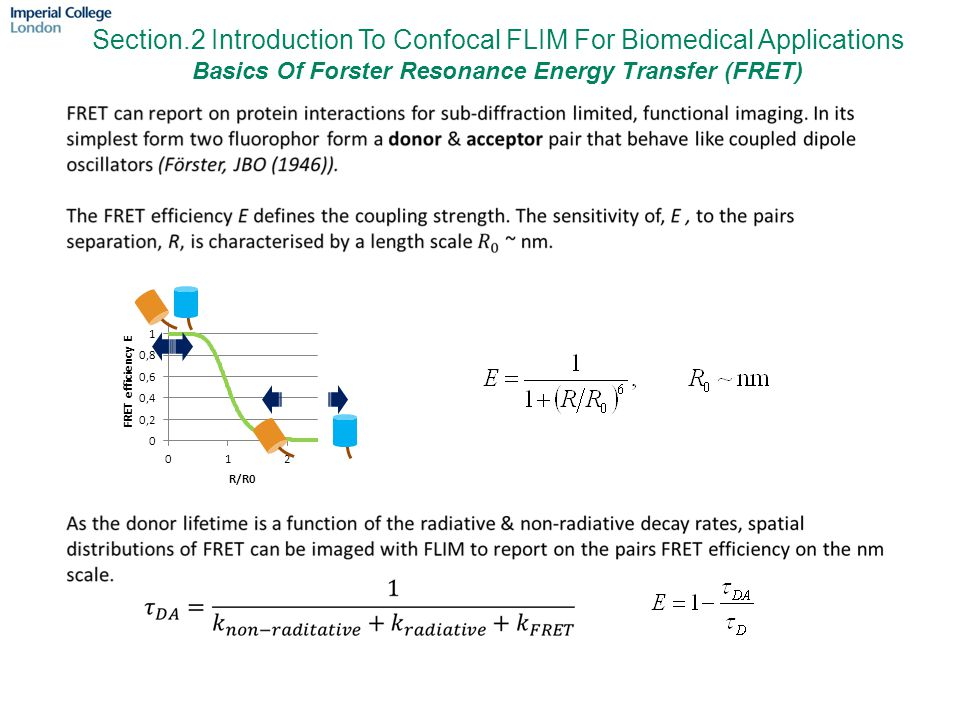 Section.2 Introduction To Confocal FLIM For Biomedical Applications Basics Of Forster Resonance Energy Transfer (FRET)