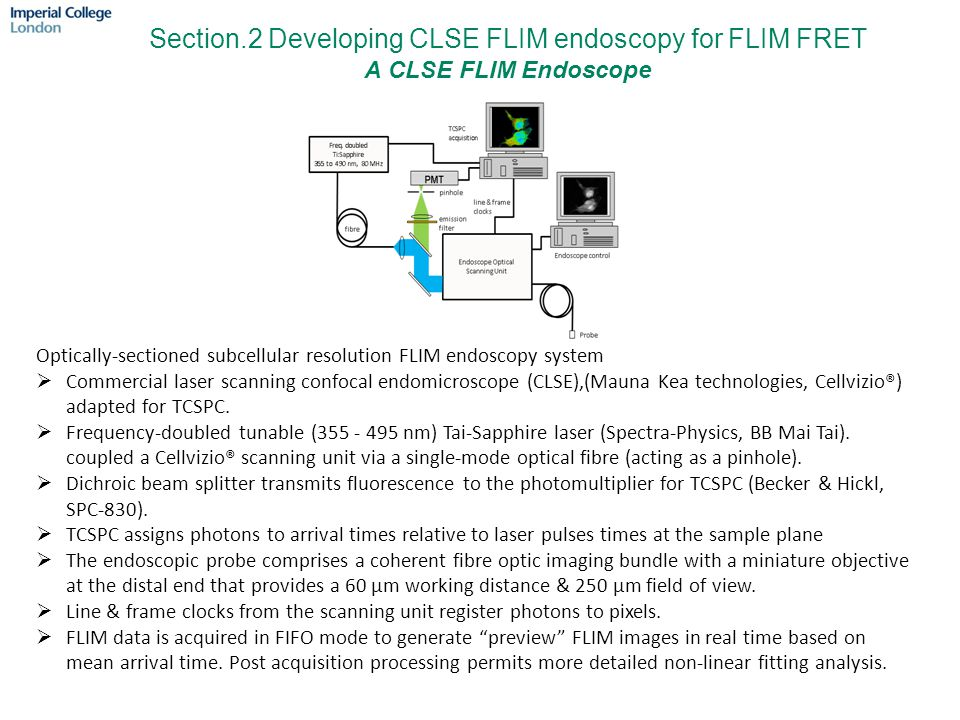 Section.2 Developing CLSE FLIM endoscopy for FLIM FRET A CLSE FLIM Endoscope Optically-sectioned subcellular resolution FLIM endoscopy system  Commer