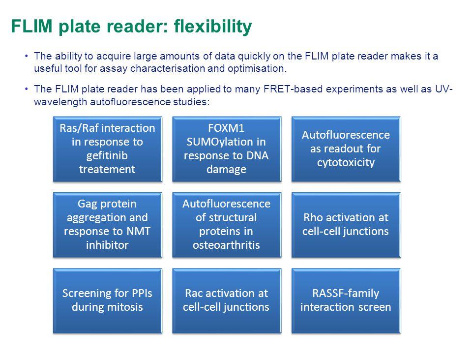 FLIM plate reader: flexibility Ras/Raf interaction in response to gefitinib treatement FOXM1 SUMOylation in response to DNA damage Autofluorescence as