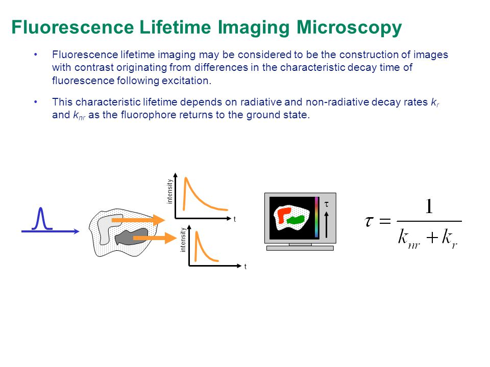 Fluorescence Lifetime Imaging Microscopy Fluorescence lifetime imaging may be considered to be the construction of images with contrast originating fr