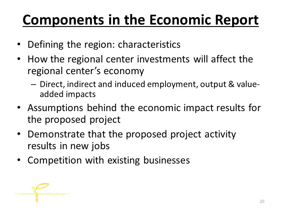Components in the Economic Report Defining the region: characteristics How the regional center investments will affect the regional center's economy – Direct, indirect and induced employment, output & value- added impacts Assumptions behind the economic impact results for the proposed project Demonstrate that the proposed project activity results in new jobs Competition with existing businesses 20