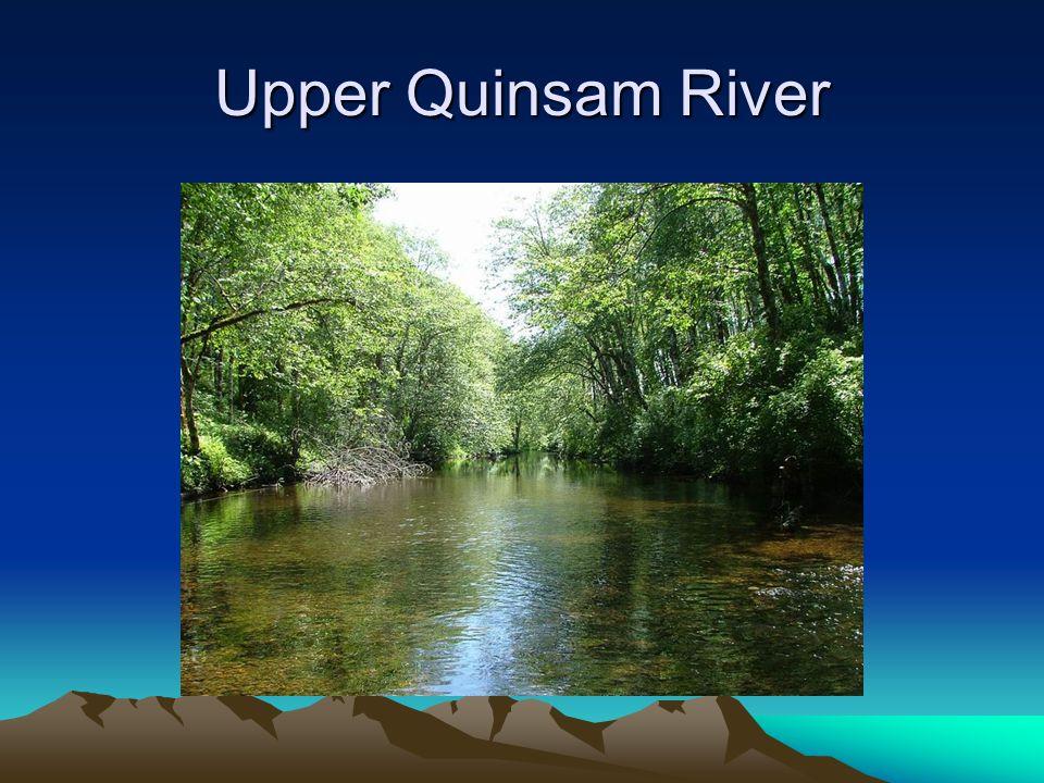 Upper Quinsam River