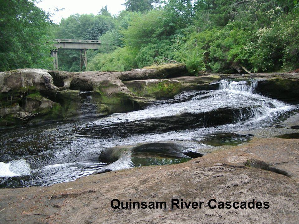 Quinsam River Cascades