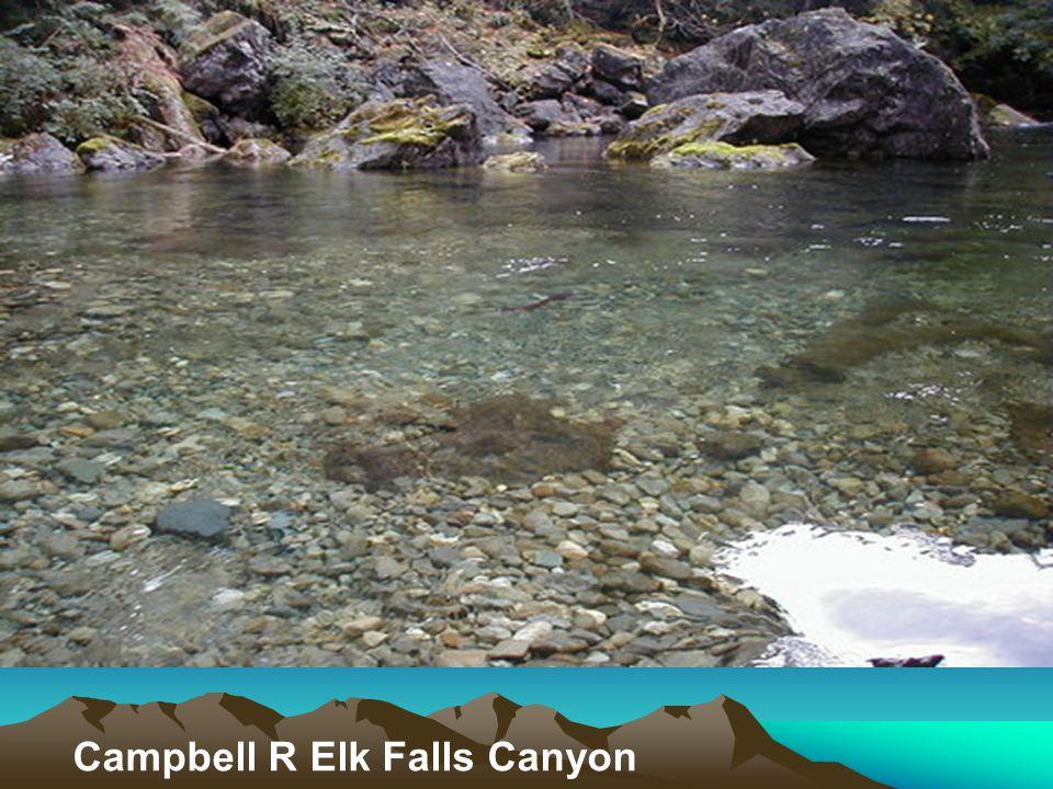 Campbell R Elk Falls Canyon