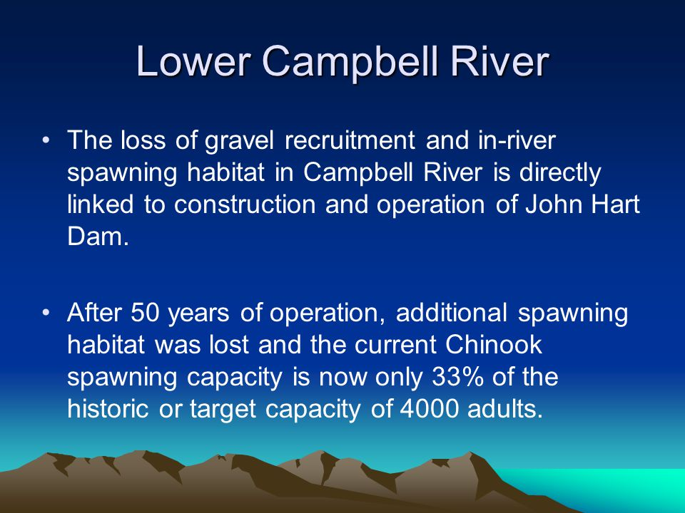 Lower Campbell River The loss of gravel recruitment and in-river spawning habitat in Campbell River is directly linked to construction and operation o