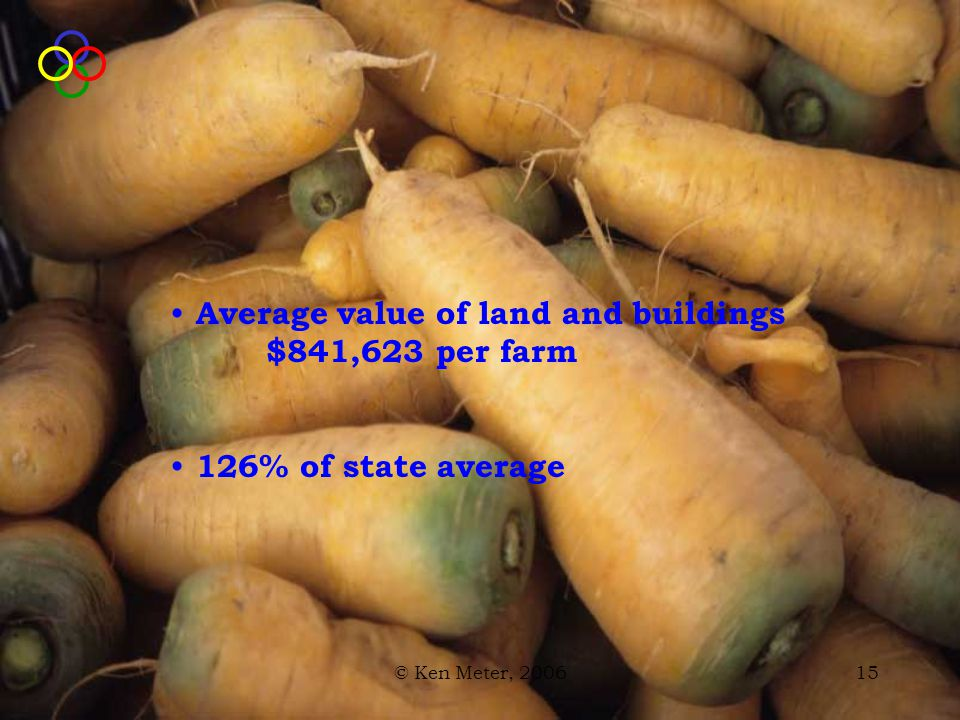 © Ken Meter, 200615 Average value of land and buildings $841,623 per farm 126% of state average