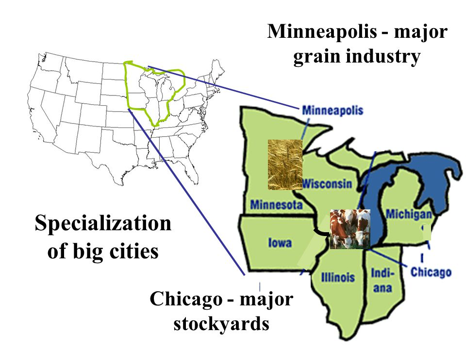 Minneapolis - major grain industry Chicago - major stockyards Specialization of big cities