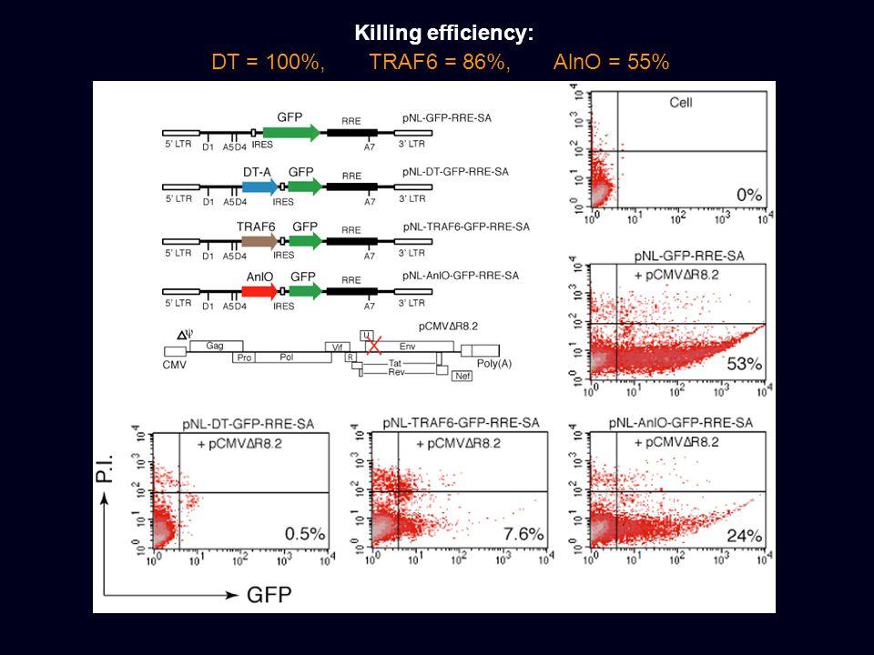 Killing efficiency: DT = 100%, TRAF6 = 86%, AlnO = 55%